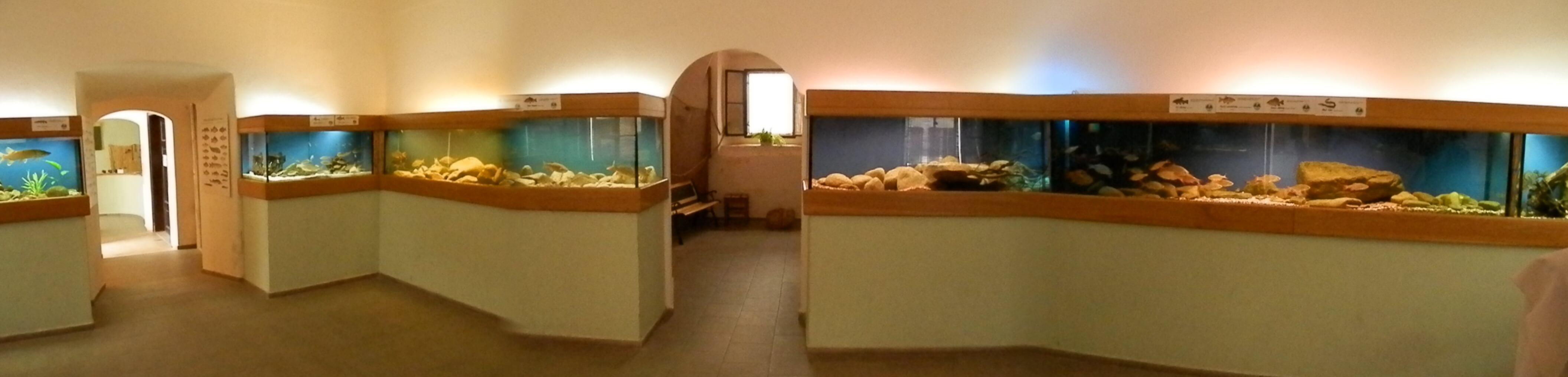 Akvárium Krčínův dům